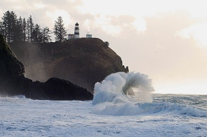 Cape Disappointment  by Sue Olson