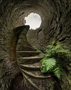spiral staircase in a well